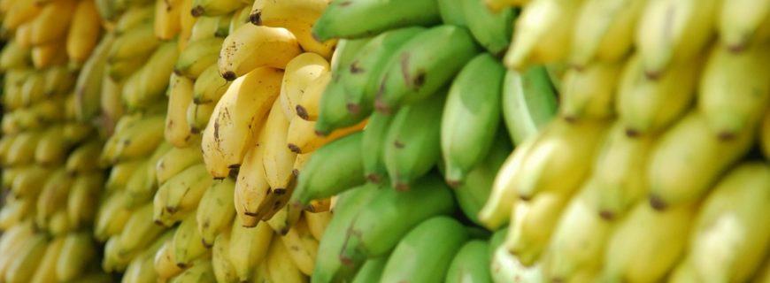 Quand la crise économique réussi au marché de la banane